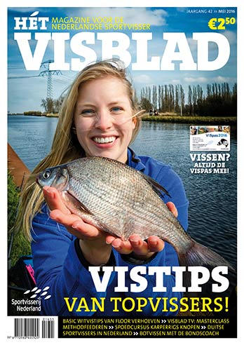 magazine cover visblad curve home_01