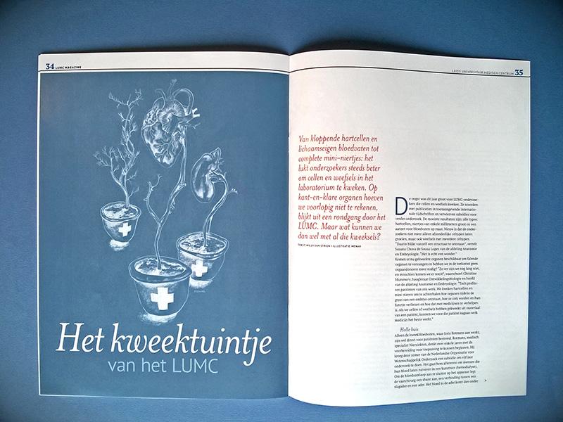 lumc magazine curve portfolio_04
