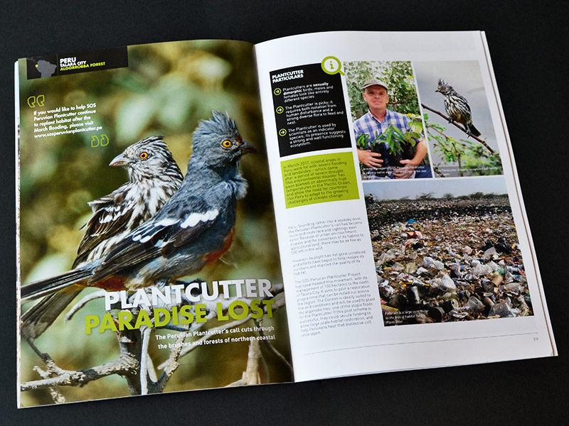 curve portfolio magazine landlife 02