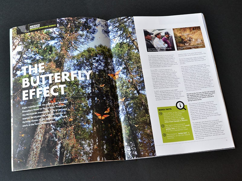 curve portfolio magazine landlife 04